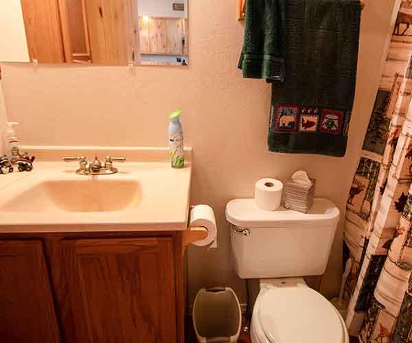 LBear-Half-Bath-2-600x500
